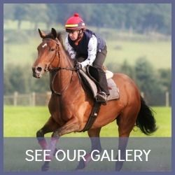Racehorse Gallery